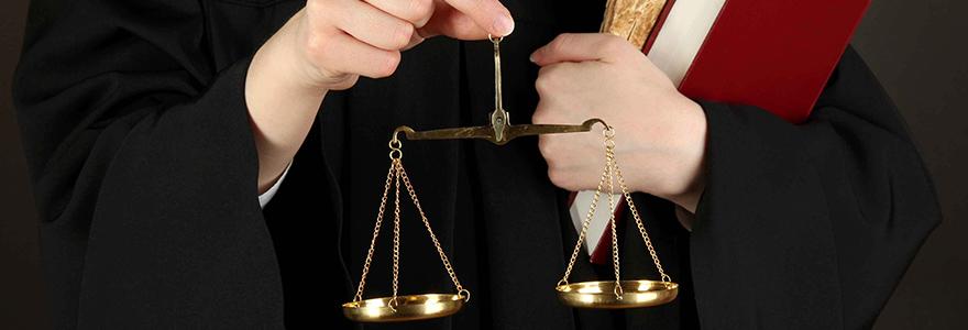 avocat du droit public